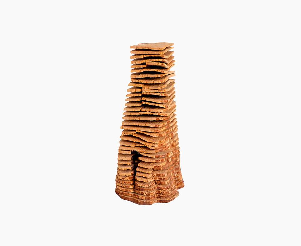 Birch crack and warp column - DAVID NASH - DN 0004