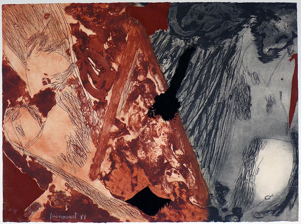 Tierra quemada - JOSEP GUINOVART - JG 0006